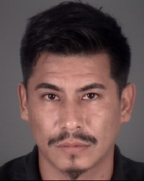 MIGUEL ANGEL  MEJIA-SANTANA Mugshot / County Arrests / Orange County Arrests