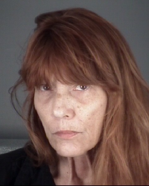 SHARON RETA  CHEESEMAN Mugshot / County Arrests / Orange County Arrests