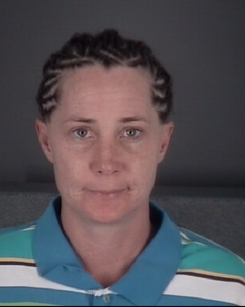 LISA KAY  FETTERS Mugshot / County Arrests / Orange County Arrests