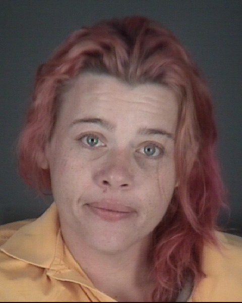 CHRISTINA LEANN  SKEEN Mugshot / County Arrests / Orange County Arrests