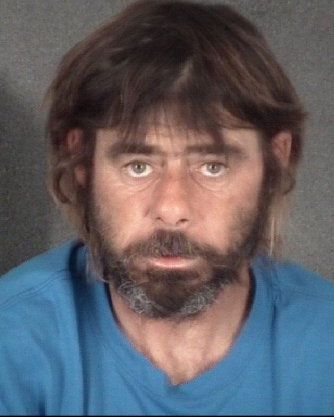 TIMOTHY MICHAEL  WITT Mugshot / County Arrests / Orange County Arrests