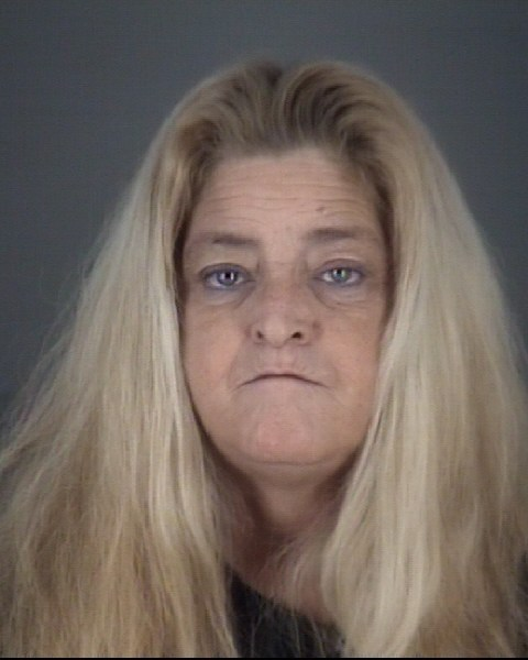TINA MARIE  DEVIGNEZ Mugshot / County Arrests / Orange County Arrests