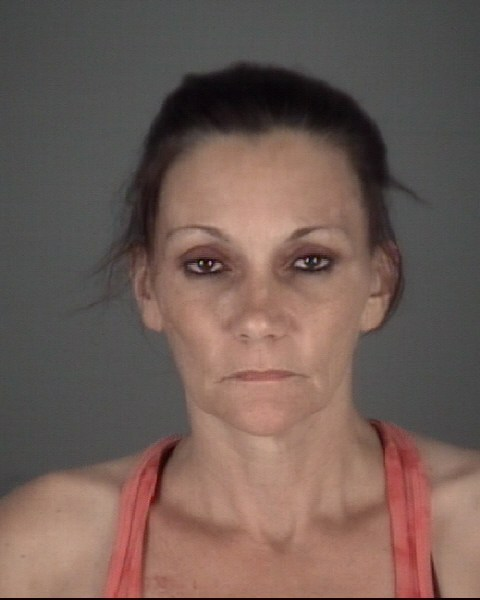 TARA ANN  HARDING Mugshot / County Arrests / Orange County Arrests