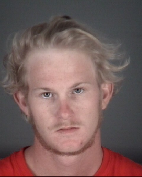 DALTON STORM  PEDOTA Mugshot / County Arrests / Orange County Arrests