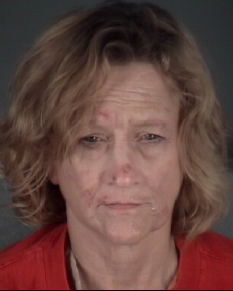 RHONDA SHRAKE  MARDIS Mugshot / County Arrests / Orange County Arrests