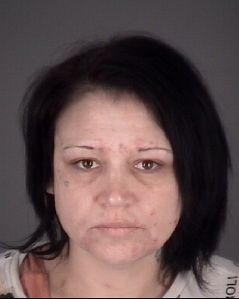 JILL RENEE  BLUEFORD Mugshot / County Arrests / Orange County Arrests