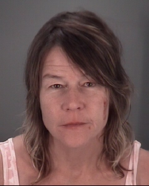 DIANE  PATTERSON Mugshot / County Arrests / Orange County Arrests