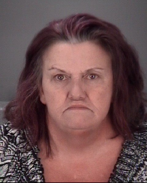 ANITA JIMMIE  BECUDE Mugshot / County Arrests / Orange County Arrests