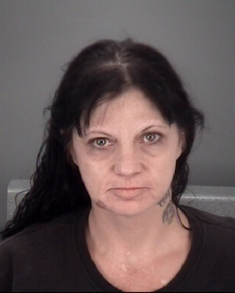 JAIME RAE  KITTING Mugshot / County Arrests / Orange County Arrests