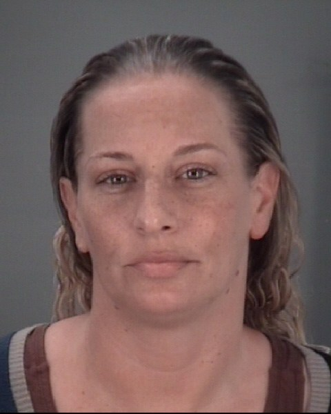 APRIL MARIE  DACCHILLE Mugshot / County Arrests / Orange County Arrests