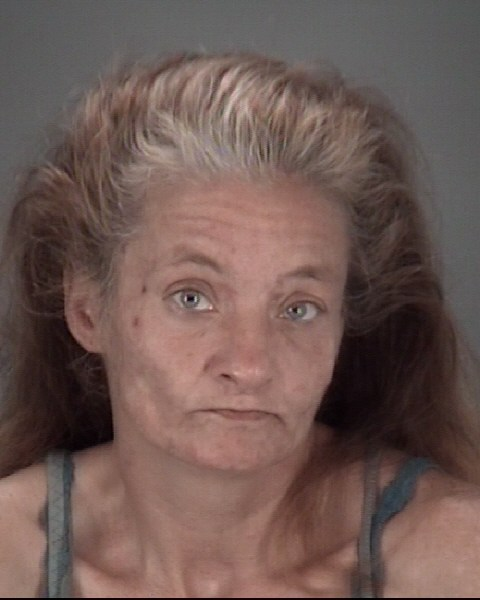 JENNIFER L  BECK Mugshot / County Arrests / Orange County Arrests